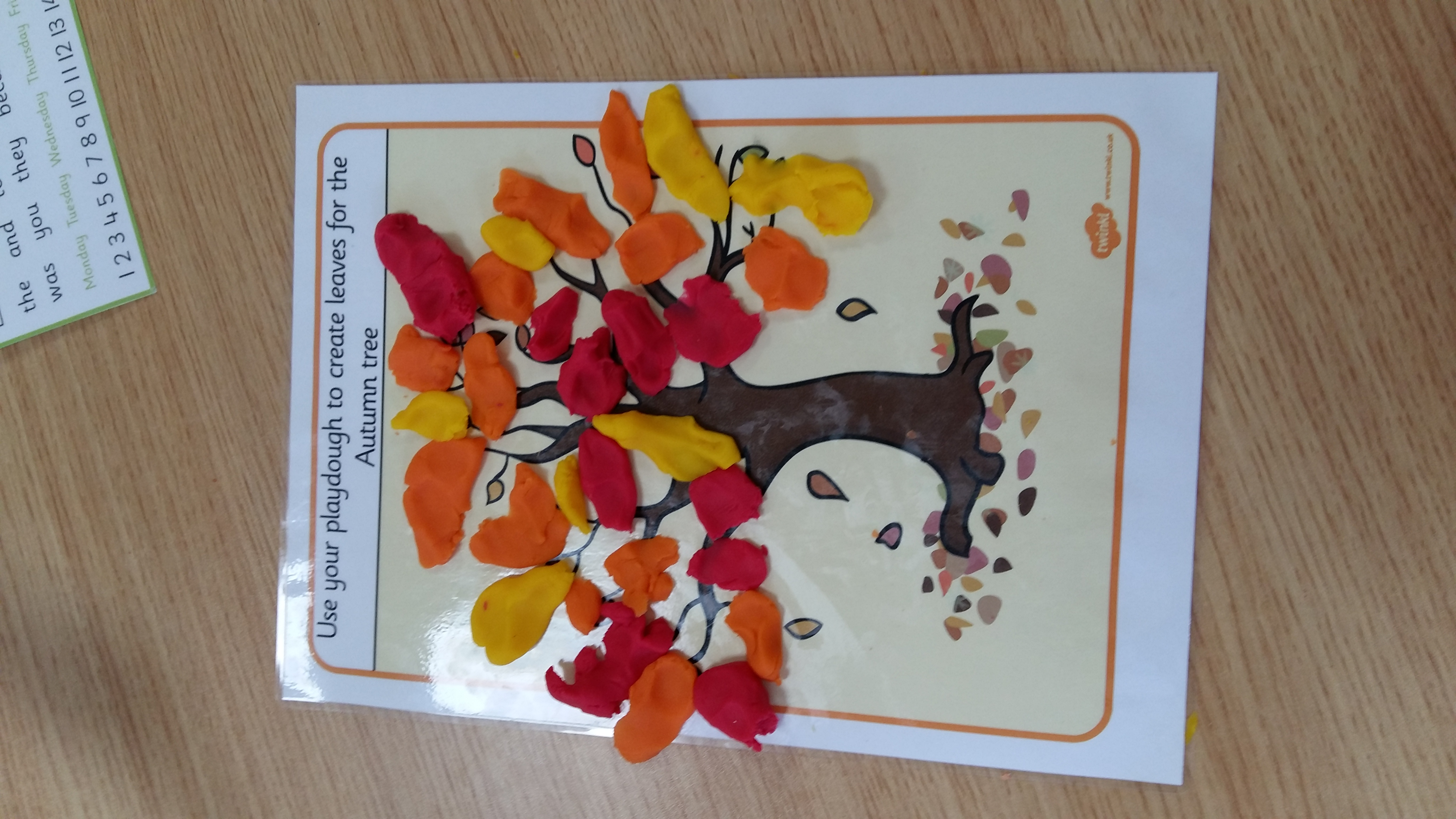 Autumn Activities In Senior Infants St Fiacc S National