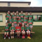 County Laois Schools Football Finalists 2015